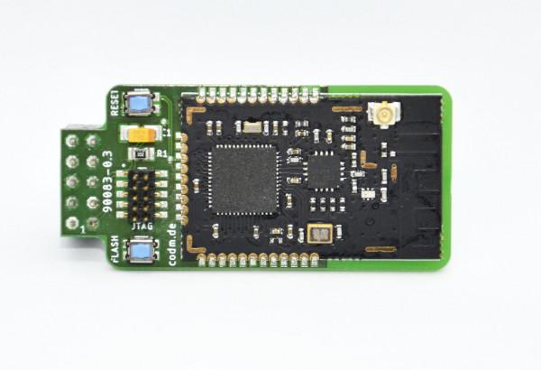 CC2538 Raspberry Pi Modul